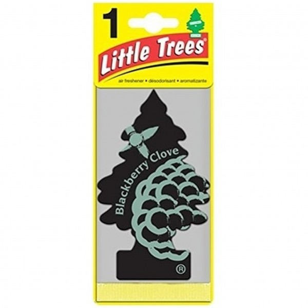 Little Trees 1's Blackberry Clove (Pack of 24)