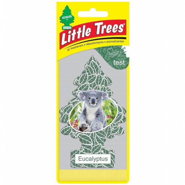 Little Trees 1's Eucalyptus (Pack of 24)