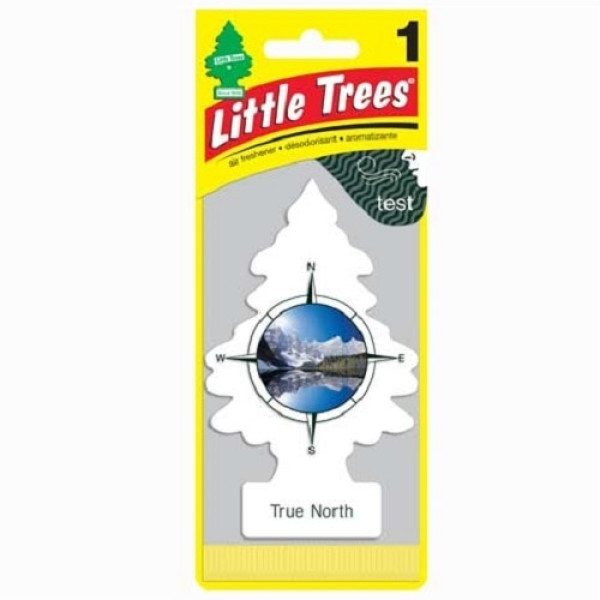 Little Trees 1's True North (Pack of 24)